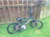 Kiddies bike