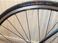 Trek limited edition racing bike