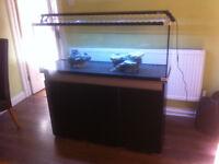 Large fish tank aquarium with cabinet