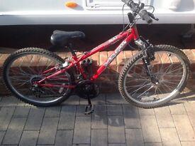 Apollo xc24 kids bike