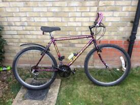 Mans falcon bike