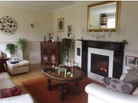 Attractive marble fire surround with mantle piece - black with gold effect