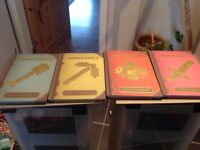 Set of 4 minecraft books