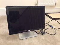 HP PC monitor 2007v