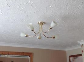 Lounge Ceiling Light