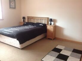 ***DOUBLE ROOM TO RENT***