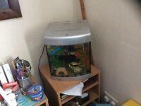 "Fish tank ""aqua 1 """
