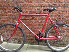 Raleigh mountain bike adults 23 inch frame very good condition