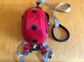 LittleLife Ladybird Reigns