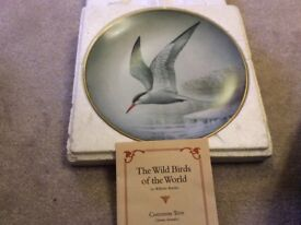 Franklin Wild Birds of the World Common Tern China plate