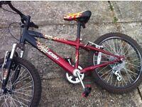 Raleigh Hot Rod boys bike