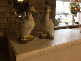 Two garden ornamental ducks
