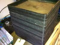 1 meter by 1 meter trays