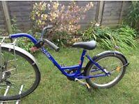 Roland Add+Bike Tag a Long Bike