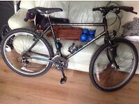 Retro Raleigh Amazon 18inch frame 26inch wheels mountain bike