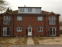 Nutwell Court Armthorpe Doncaster
