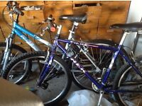 His and hers pedal bikes
