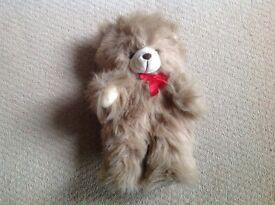 Medium size teddy