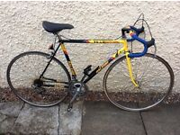 Raleigh Team Banana Road Bike