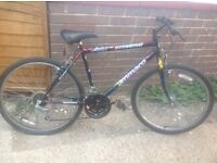 Classic Retro Emmelle mountain Bike 15 speed