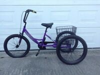 Fun Tricycle age 6 to 11