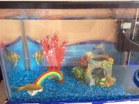 Fish tank - 24 litre, ornaments and 2 goldfish