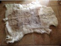 Grade A Reindeer skin Rug