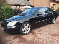 MERCEDES S CLASS £2495 P/X CASH ITHER WAY