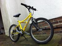 MERCIER mountain bike for kids