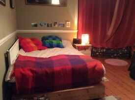 *ON HOLD UNTIL JAN* Beautiful double room with turret in redland houseshare with awesome people!