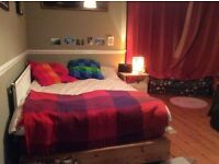 Beautiful double room with turret in redland houseshare with awesome people!