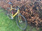 """21"""" Road Bike"""