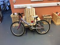 Townsend Reflex Pink Mountain Bike.