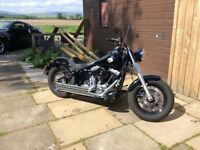 Harley soft tail slim FLS for sale