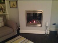 Gas Fire in full working order