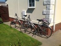 Ladies and gents Raleigh bicycles very good condition