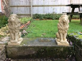 A pair of proud lions £40