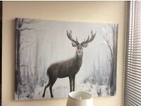 Large stag canvas picture
