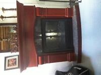 Electric fireplace $200.00 OBO
