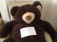 Large cuddly bear needs a home. As new.