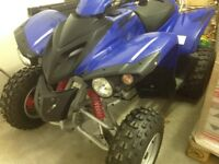 ADLY ATV 300 Quad bike. Got very little use . Unwanted present.