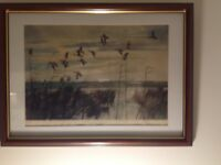 Peter Scott Wildfowl Print