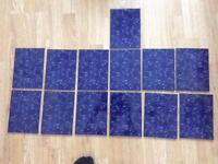 Royal blue tiles for border of splash back .