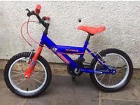 Kids boys Raleigh bike. Excellent condition.
