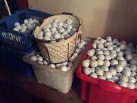 BEst quality second hand golf balls