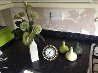 Green vases, flowers & clock