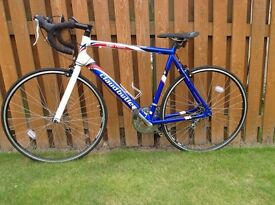Claud Butler San Remo 56cm frame adult road bike for sale