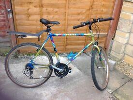 Mans Raleigh Mantis bike