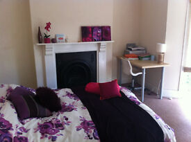 Private NO FEES Stunning 4 bed Student house in Brynmill Swansea £69 p/w 2017/2018
