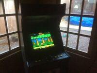 Video Arcade machine ideal xmas present